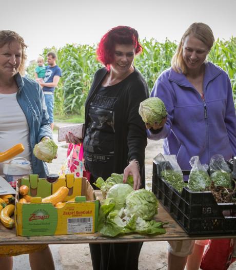 Volkstuinvereniging Wijhe bedenkt sociale oplossing voor overdadige groenteoogst