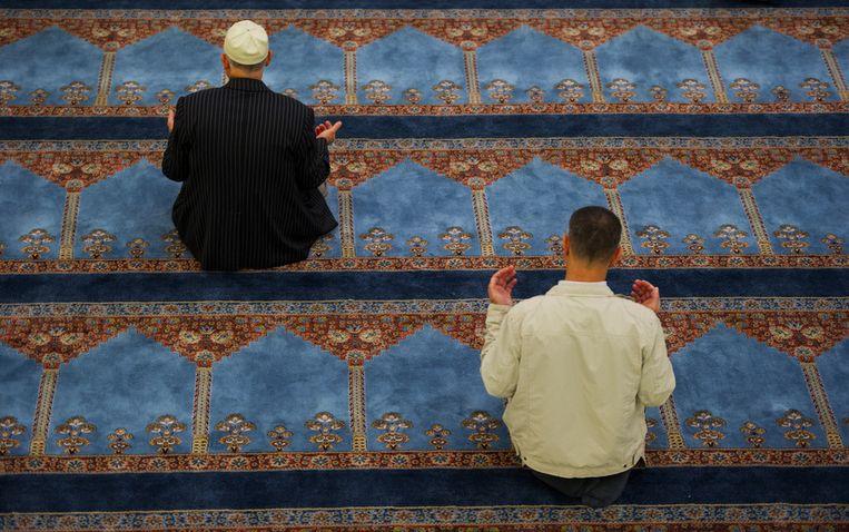Gebed in een Nederlandse moskee. Deze personen zijn voor zover bekend niet betrokken bij discriminatie van sjiieten. Beeld anp
