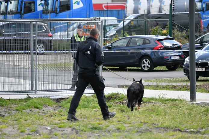 Ook een speurhond wordt ingezet in de zoektocht naar Julie Van Espen.