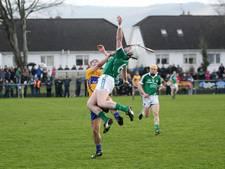 Ierse volkssport hurling heeft last van onze zieke essen