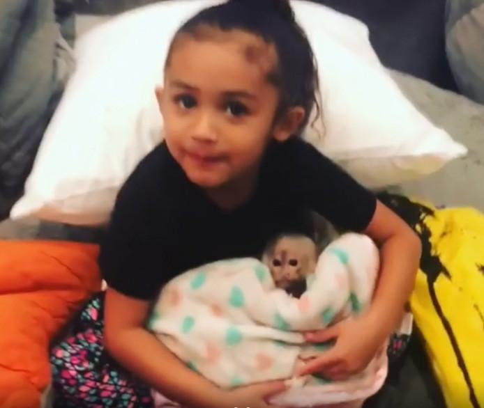 Royalty, het dochtertje van Chris Brown, met het aapje