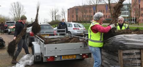 Gratis af te halen in Maurik: 42.000 struiken en 450 bomen, voor een beter milieu