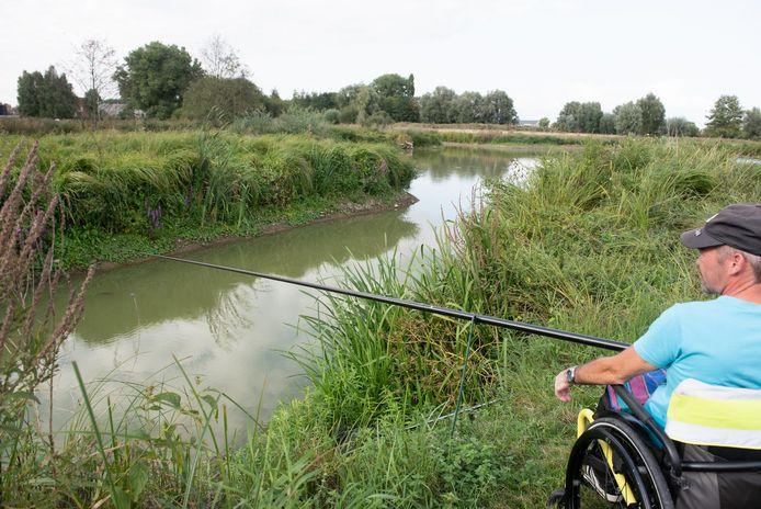 Ondanks de droge zomer staat er in de vijver van het natuurgebied nog steeds water.