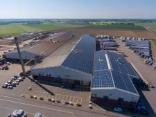 Megaproject: In Hedikhuizen hoeven ze hun zonnepanelen niet terug te verdienen