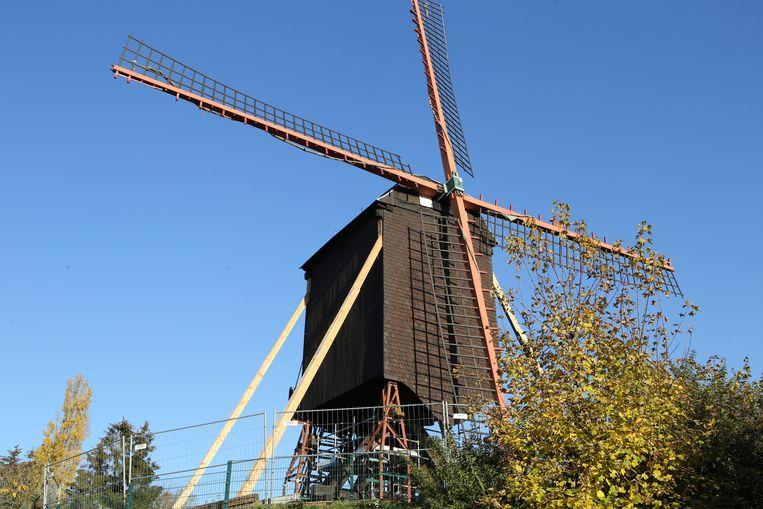 Rond de gestutte molen zijn hekken gezet.