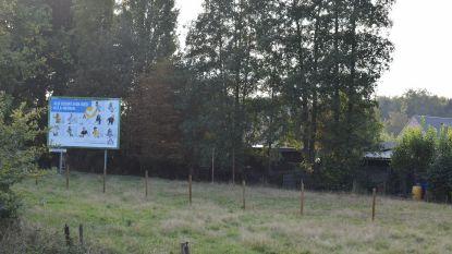Projectontwikkelaar wil 39 nieuwe huizen bouwen op De Katte