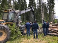 Dalfser houtbedrijf Foreco viert lustrum met buitenlandse trips