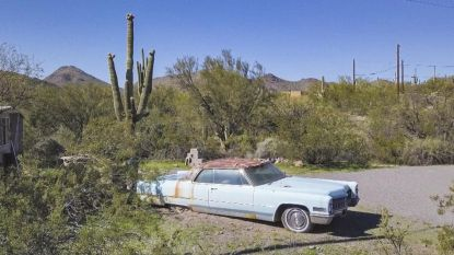 Blauwe Cadillac toch niet gelinkt aan moord op Sally Van Hecke