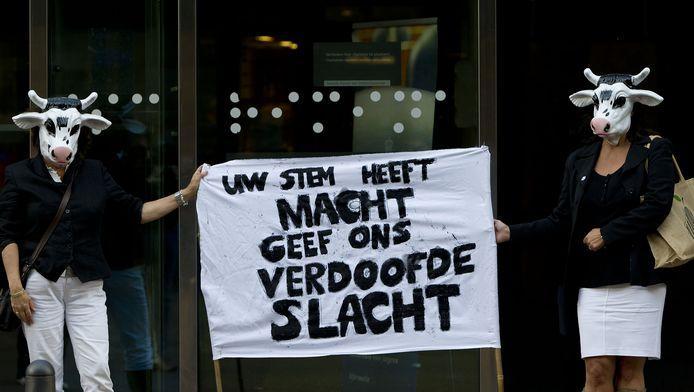 Protest tegen onverdoofde slacht.