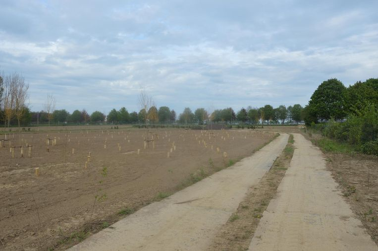 Het terrein naast de huidige begraafplaats in Ninove, waar dieren begraven zullen worden.