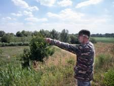 Natuur in De Groene Punt in Helmond: 'Gewoon versterken wat er al is'
