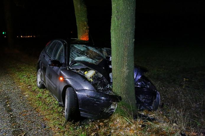 Auto rijdt op boom in Hoogeloon.