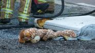 Brandje op kinderkamer aan Voorhout: Matras en speelgoedknuffels vatten vuur