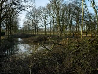 Provincie pompt 67.000 euro in exploitatie Antitankgracht