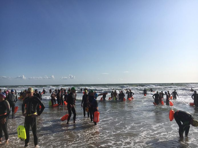 De zwemmers staan klaar voor de start in Westkapelle.