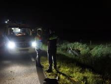 Drie gewonden bij ongeluk Wanneperveen