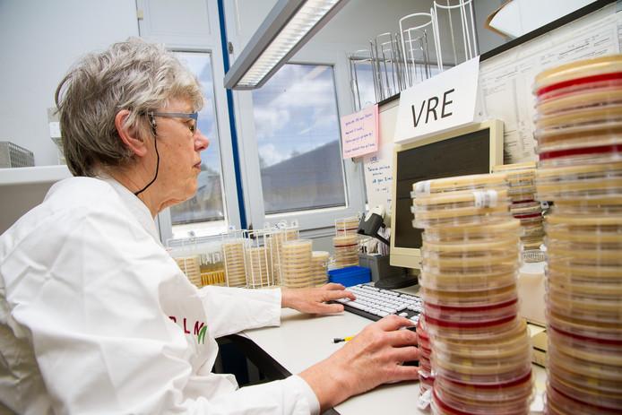 Laboranten onderzoeken de bacterie, in een ander ziekenhuis dan het Diak.
