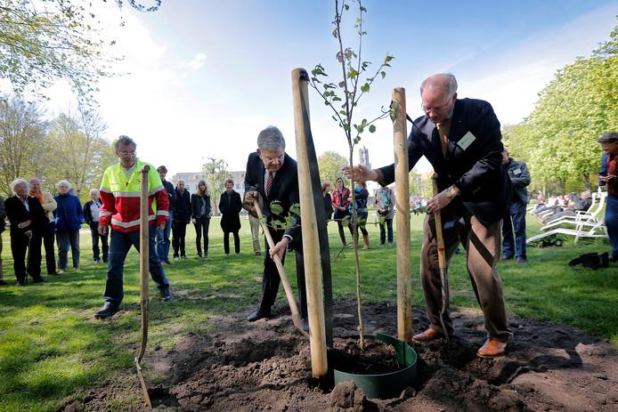Op Open Tuinendag in 2014 plantte burgemeester Jan van Zanen een zakdoekjesboom in Park Lepelenburg.