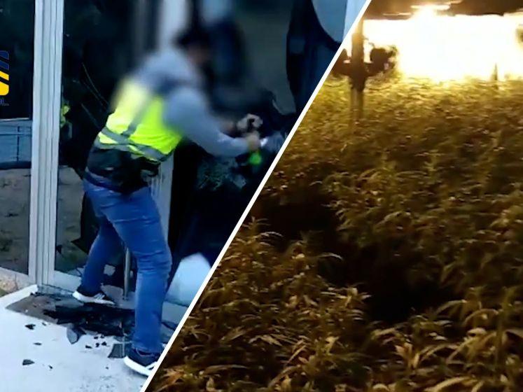 Viertal Nederlanders dat internationale drugsbende leidde opgepakt in Spanje