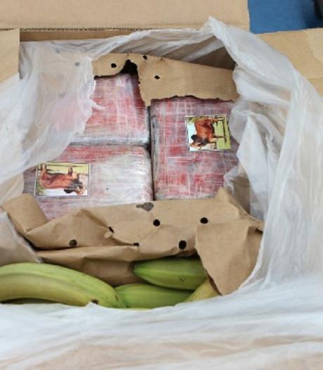 Vader (74) en twee zoons vast voor smokkel van ruim 3000 kilo cocaïne