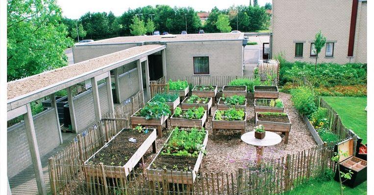 De kweekbakken die mogen worden gebruikt door buurtbewoners.