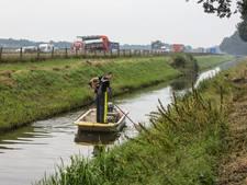 Visstand-onderzoekers vinden snoek in het netje in Liessel