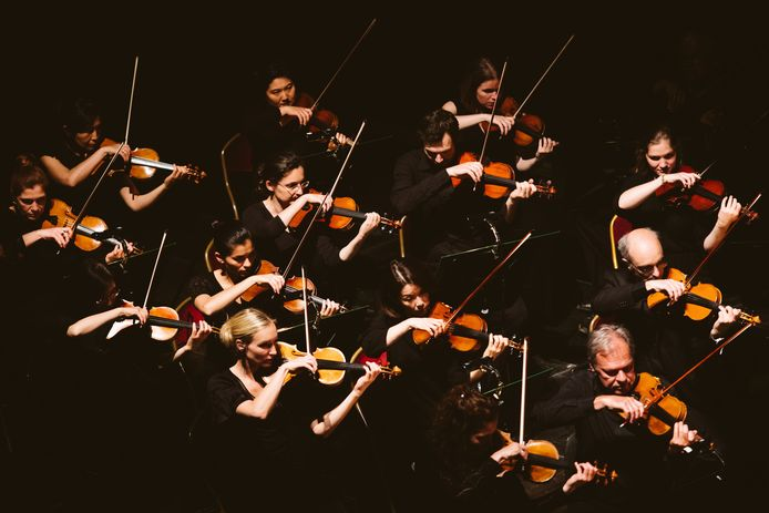 Het Antwerp Symphony Orchestra