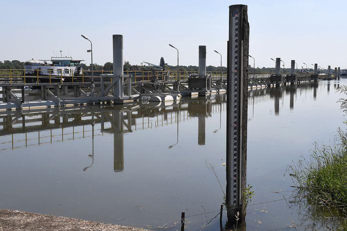 De Maas bij Sambeek. De stuw zorgt ervoor dat het peil van de rivier tien centimeter hoger is dan normaal in de zomer.