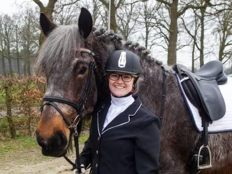 Op je Belgische trekpaard van duizend kilo lekker  een dressuurwedstrijd rijden