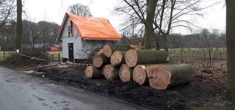 Vrijwilligers ruimen stormhout Beerschoten op