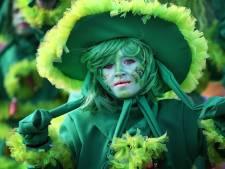 Wie beslist wat wél kan met carnaval? De burgemeester, de minister of de Veiligheidsregio? 'Het is een chaos'
