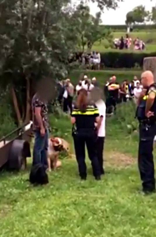 Een 8-jarig meisje uit Rotterdam raakte zwaar gewond toen zij in een parkje in Rotterdam werd aangevallen door een hond. Een 69-jarige Rotterdammer werd aangehouden. De hond is in beslag genomen en later afemaakt.