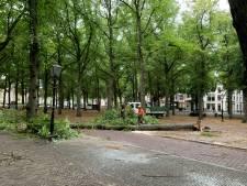 Storm Francis houdt huis in Den Haag