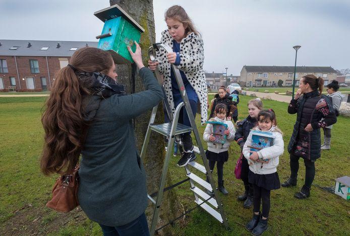 Ranja van 9 van de Regenboog hangt samen met Monique Bazuin een vogelhuisje op. De huisjes zijn door de kinderen zelf gemaakt.