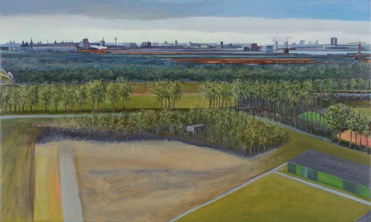 Voormalig sportpark Elzenhagen Beeld Sigrid van Essel
