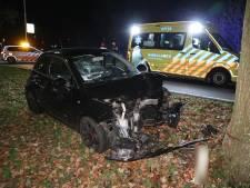 Automobiliste ramt boom in Arnhem