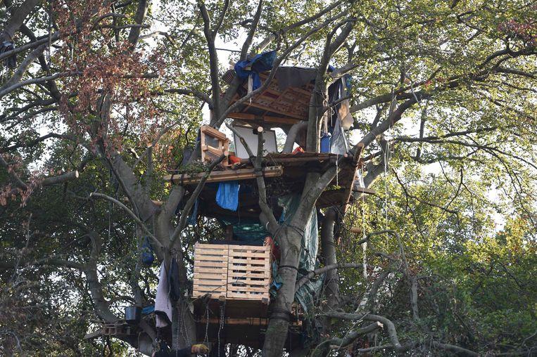 Een boomhut in het bos van Hambach.