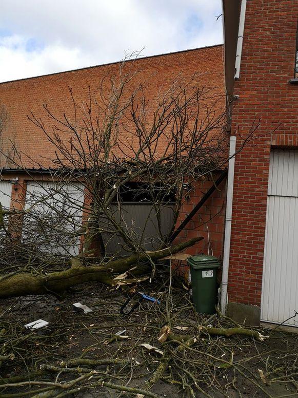 De boom vernielde ook in een garage.