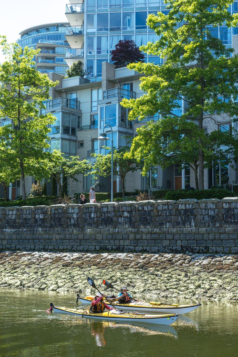 Kajakkers in downtown Vancouver. Beeld null