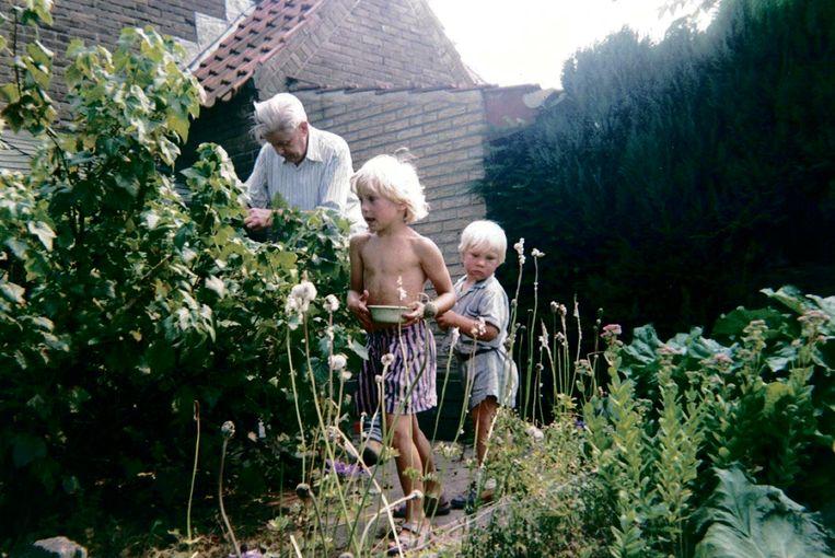 Bessen plukken bij 'opa van de kippen' Beeld