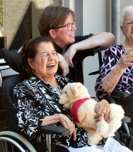 Heterense ouderen kunnen lekker knuffelen met  robotdier Pasja: 'De dieren zijn in trek'