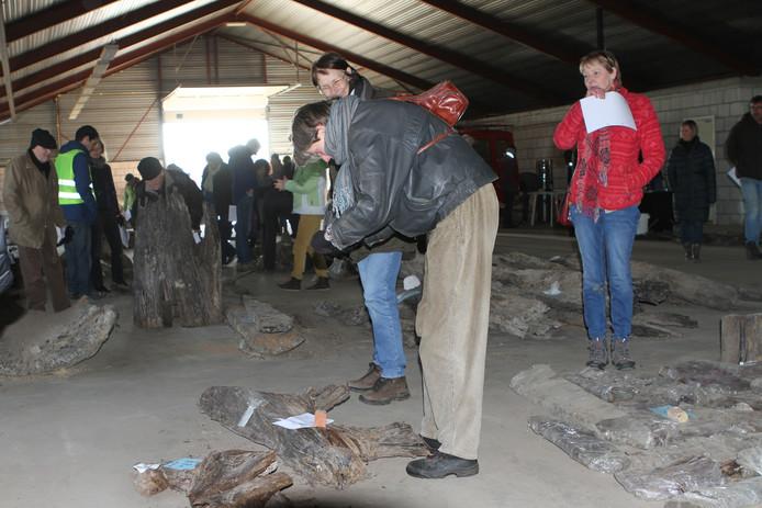 Er was veel belangstelling voor de kavels archeologisch hout.