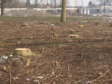 Woede over kap bomen zwembad Tholen