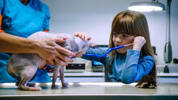 De kinderen gaan op bezoek bij een dierenarts voor sprekende dieren.