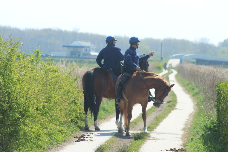 Archiefbeeld. De cavalerie van de federale politie patrouilleert langs de landsgrens in De Panne.