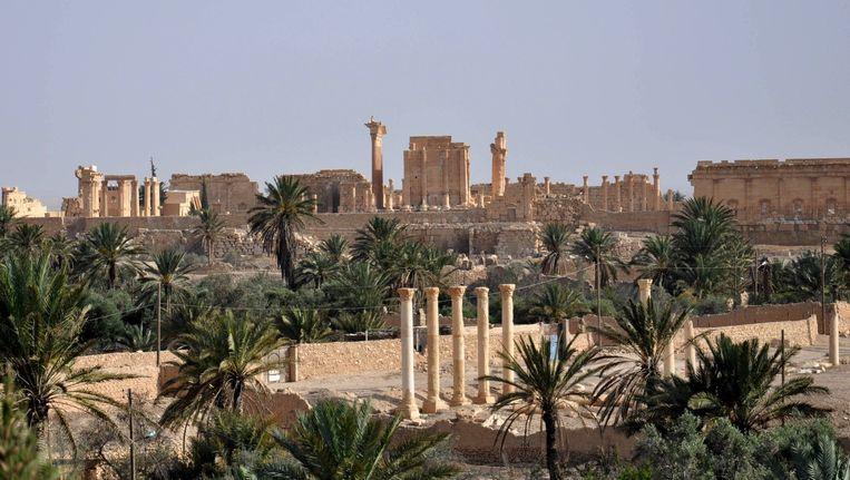Het oude centrum van Palmyra (mei 2015). Beeld afp