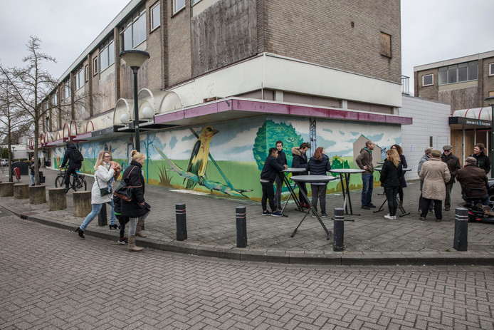 Muurschildering bij winkelcentrum de Wielewaal in Geldrop.
