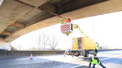 Loszittende stukken beton van snelwegbrug preventief afgetikt