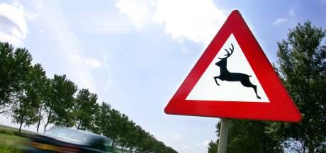 Reebokjes preventief afgeschoten voor verkeersveiligheid in Twente