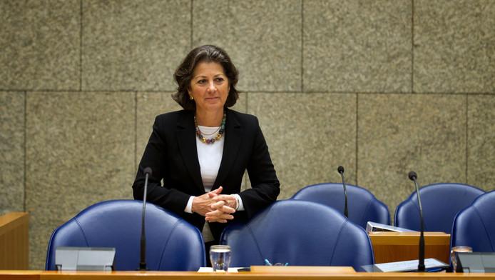 Staatssecretaris van Volksgezondheid, Welzijn en Sport Marlies Veldhuijzen van Zanten half februari in de Tweede Kamer.